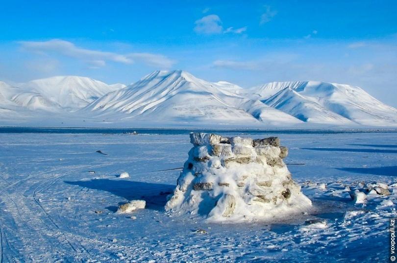 старались фотографии северного полюса последнее