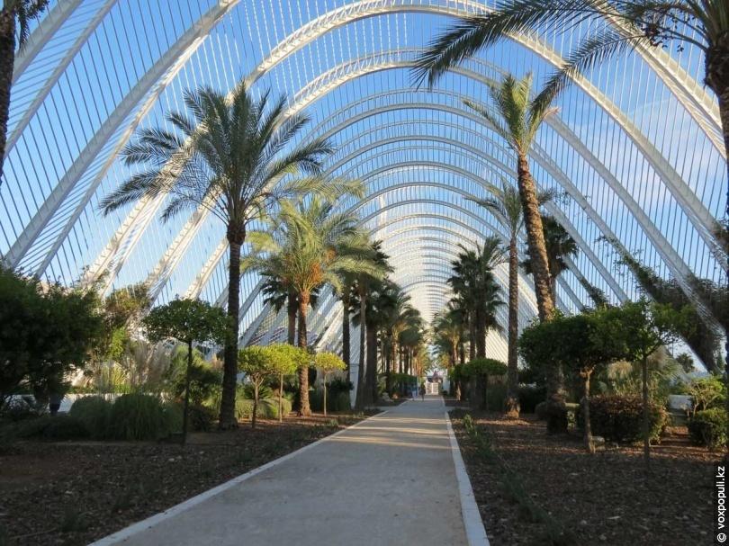 Галерея-сад L'Umbracle