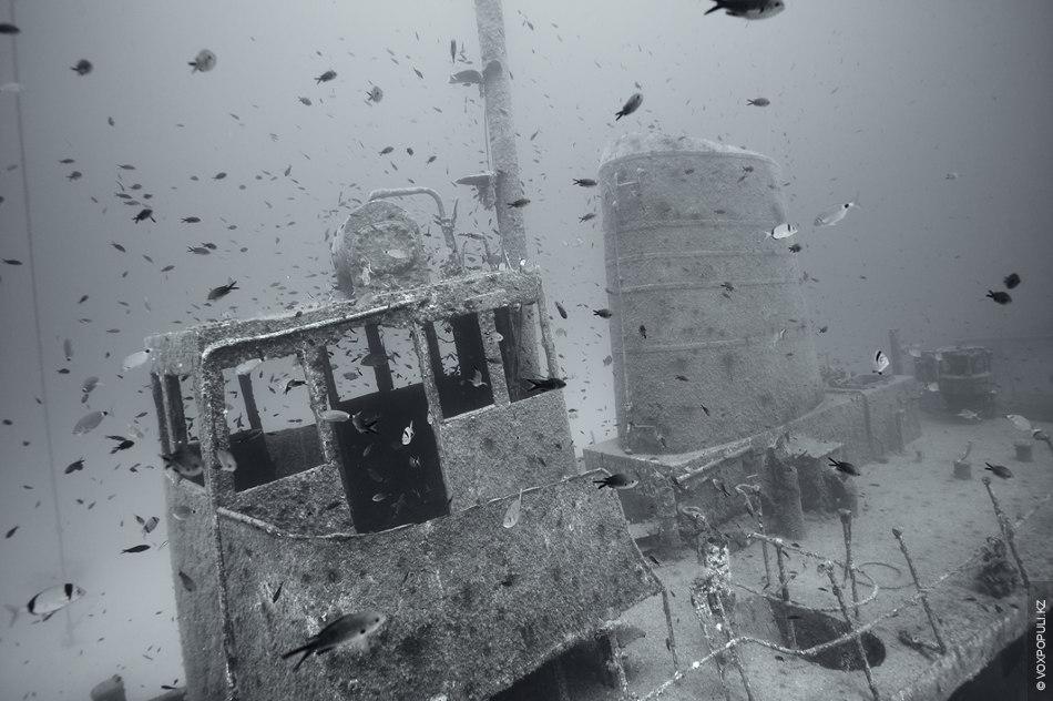 ношу индианаполис фото затонувшего корабля москву