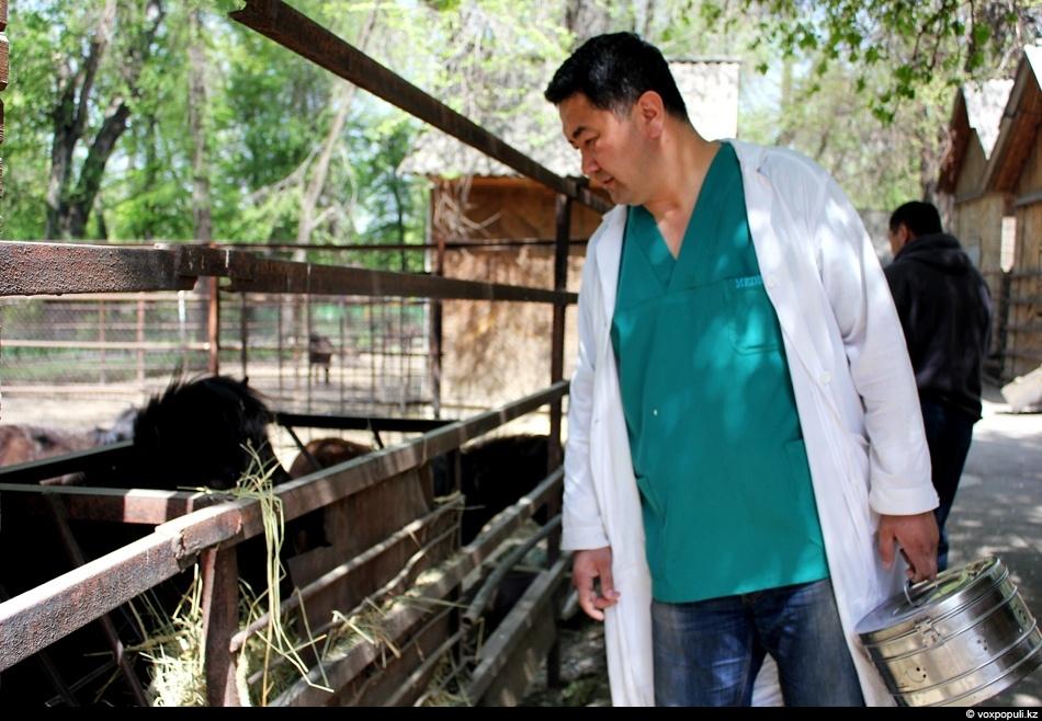 врач на своем участке